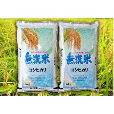令和2年産茨城コシヒカリ無洗米5kg×2 (米)