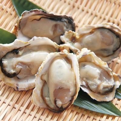 冷凍食品 業務用 兵庫県 室津産 ハーフシェルオイスター 約50g×10粒入 22444 牡蠣 手剥き