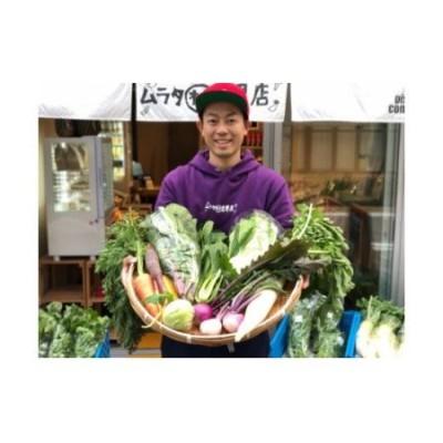 宮崎県産朝どれ野菜セット10~13品(発送日に収穫した新鮮野菜を出荷)