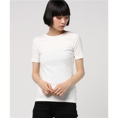 tシャツ Tシャツ ワイドリブTシャツ