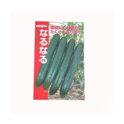 キュウリの種 なるなる 20粒 ( 野菜の種 )