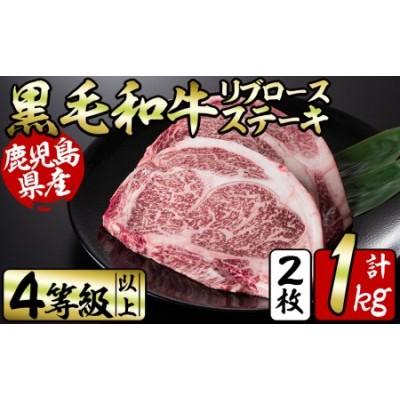 b5-091 鹿児島県産和牛リブロースステーキセット