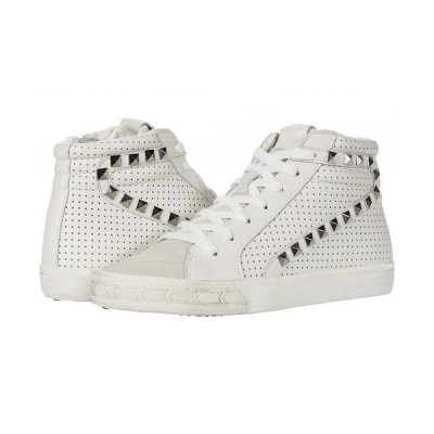 Steve Madden スティーブマデン レディース 女性用 シューズ 靴 スニーカー 運動靴 Tracey Sneaker - White