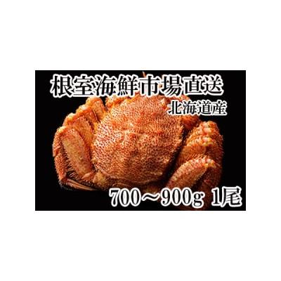 ふるさと納税 毛がに700〜900g×1尾 B-11020 北海道根室市