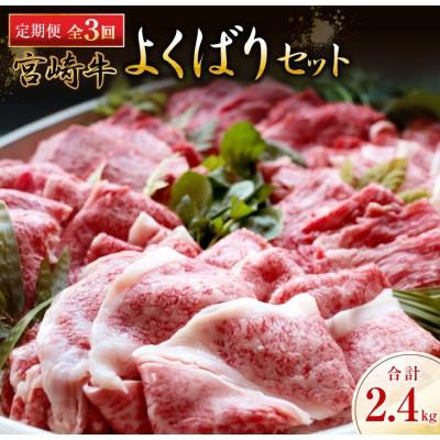 《3か月お楽しみ定期便》宮崎牛よくばりセット(合計2.4kg)都農町加工品