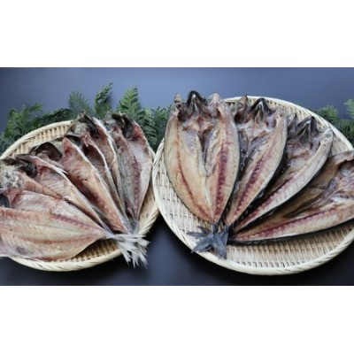 脂がのった大型干物 開きあじ6尾 開きサバ4尾 富山 魚津 浜浦水産 鯵 アジ 鯖 さば