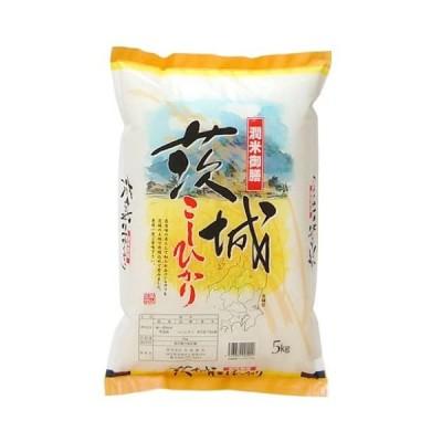 精米茨城県産 コシヒカリ 5kg 令和元年産 (5kg)