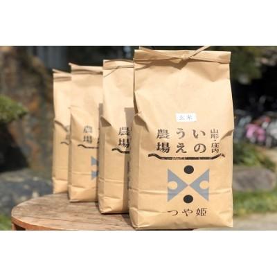 C52-001 【令和2年産】井上農場の特別栽培米つや姫【玄米】20kg(5kg×4袋)