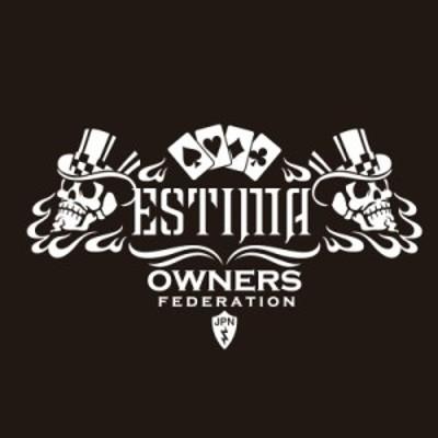 カッティングステッカー トヨタ(TOYOTA)エスティマ ESTIMA cardskull 車 カー ステッカー アクセサリー シール ガラス[◆]