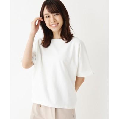 tシャツ Tシャツ 【洗える・42(LL)WEB限定サイズ】ボートネックカットソー