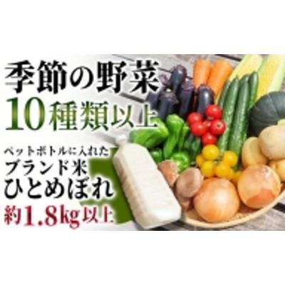 "TB0-51 ""季節の野菜""と""ペットボトルに入ったお米""のセット"