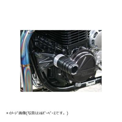 STRIKER(ストライカー) ガードスライダー ALL ブラック ゼファー ZEPHYR1100