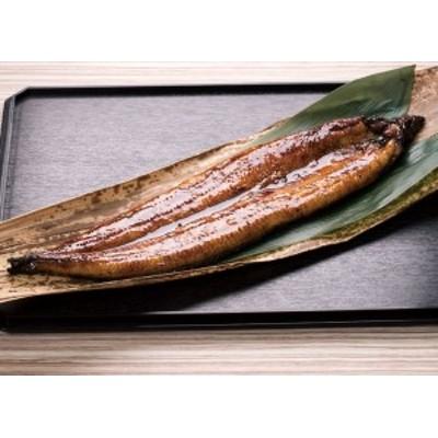 送料無料 国産うなぎ 蒲焼大セット / ウナギ 鰻 蒲焼 お取り寄せ 人気 グルメ ギフト