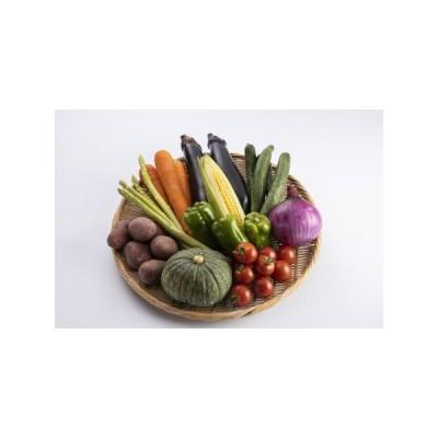 ふるさと納税 【A7-003】季節の野菜詰め合わせ 長崎県松浦市