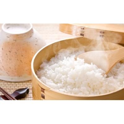 あいがも米 コシヒカリ 5kg  美味しいお米 お取り寄せ