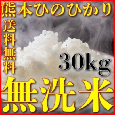 米 30kg 九州 熊本県産 ひのひかり 無洗米 令和元年産 ヒノヒカリ 送料無料 5kg6個 精白米 くまもとのお米