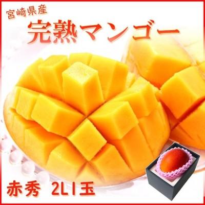 完熟マンゴー 赤秀 2L1玉 350g以上 宮崎県産 母の日 父の日 ギフト 送料無料