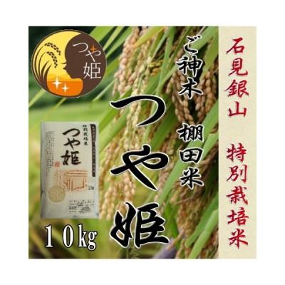 令和2年産 お米10kg / 石見銀山棚田米ご神木米 つや姫 特別栽培米 1等米