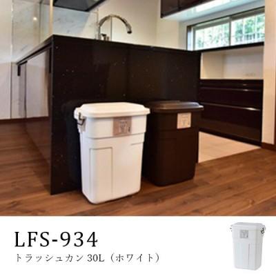 ごみ箱 ダストボックス 30L フタ付き 省スペース トラッシュカン 屋外使用可能 おしゃれ ホワイトカラー