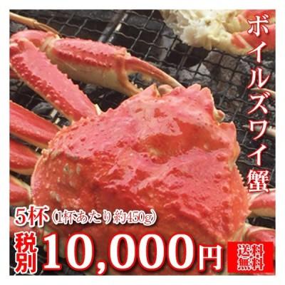 (ズワイガニ 03)ボイルズワイ蟹 3杯 (1杯あたり約550g〜600g・ボイル済み)(カナダ産)(送料無料 ※北海道・沖縄・離島への配送は別途500円の送料となります。)