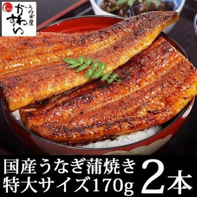 2本セット 特大 国産 うなぎ 蒲焼き 170g 鰻 ウナギ 送料無料