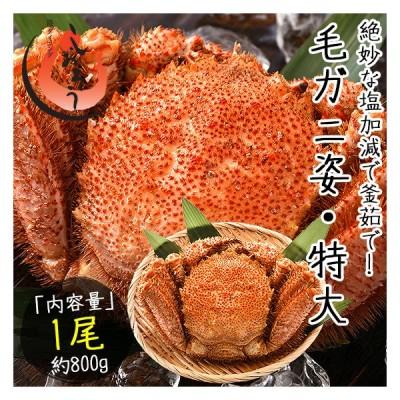 毛蟹 毛がに 毛ガニ 800g前後×1尾 北海道産