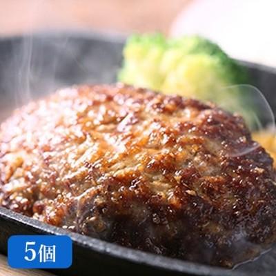 長崎県物産振興協会 壱岐牛ハンバーグ5個セット TW2060163283