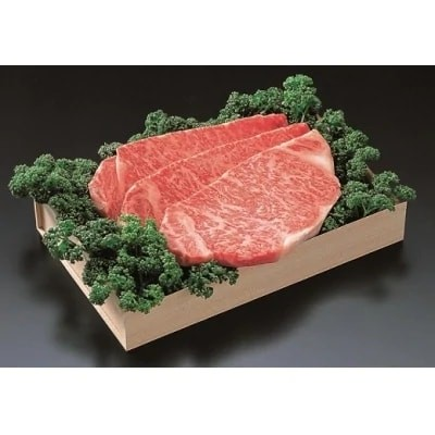 佐賀牛)ロースステーキ200g×3枚とモモしゃぶ・すき焼用500gセット (H040106)