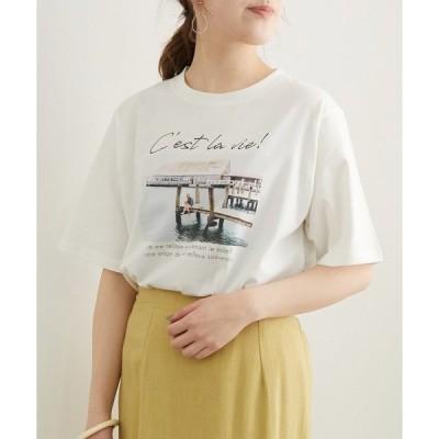 tシャツ Tシャツ アソートTシャツ