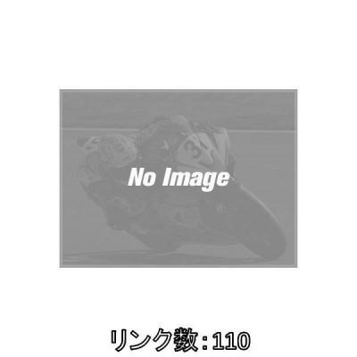 EKチェーン EKチェーン:江沼チェーン ThreeD(スリード)チェーン 525SPR リンク数:110L ZRX1200ダエグ ニンジャ H2 1290 SUPER DUKE R