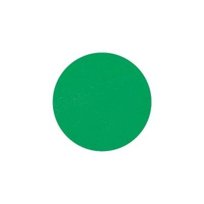 【メール便OK】 【取寄】ネイルパーツ ラメ ホログラム グリッター アート ピカエース #755 着色顔料 フォレストグリーン
