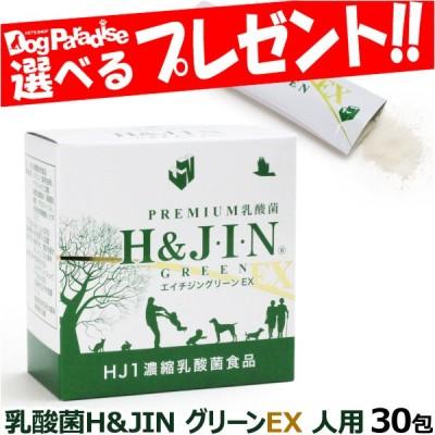 Premium乳酸菌H&JIN グリーンEX 人用 30包 乳酸菌 サプリ サプリメント エイチジン 人間用 高品質乳酸菌