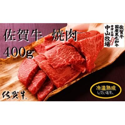 中山牧場 佐賀牛焼肉(400グラム)