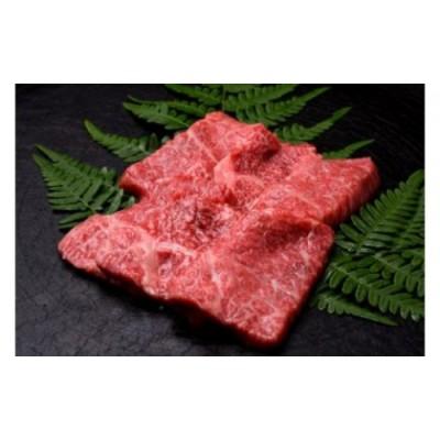 飛騨牛もも焼肉用500g[D0030]