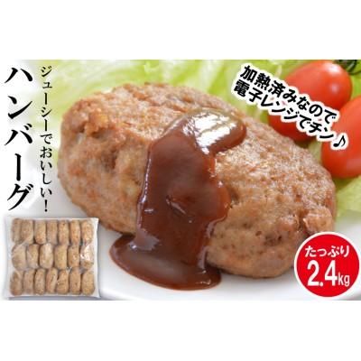 ジューシーでおいしい!ハンバーグ 2.4kg(120g×20個)