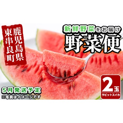 【14596】自慢の農家×老舗青果店 新鮮でおいしい野菜便(スイカ×2玉)【5月発送】【有留青果】