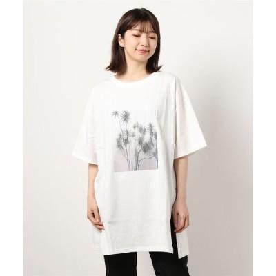 tシャツ Tシャツ Leafフォトプリント5分袖Tシャツ