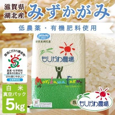 令和2年 滋賀県産 みずかがみ 真空パック白米5kg