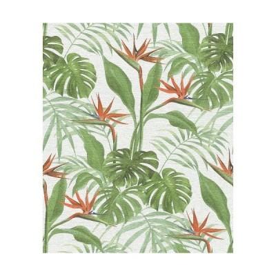 壁紙  張り替え おしゃれ 輸入  おすすめ ラッシュrasch 2020 輸入壁紙 529029 ホワイト グリーン 白 緑 葉っぱ トロピカル 南国