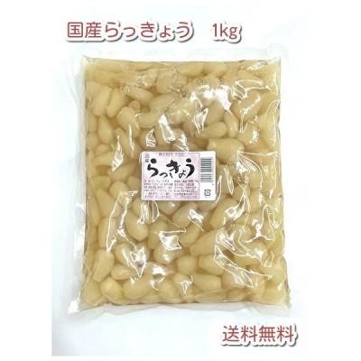 国産 らっきょう 甘酢漬 1kg 送料無料 漬物