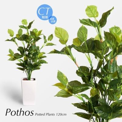 人工観葉植物 造花 大型 ポトス 120cm 鉢植 フェイクグリーン CT触媒 リアル 消臭(t5104)