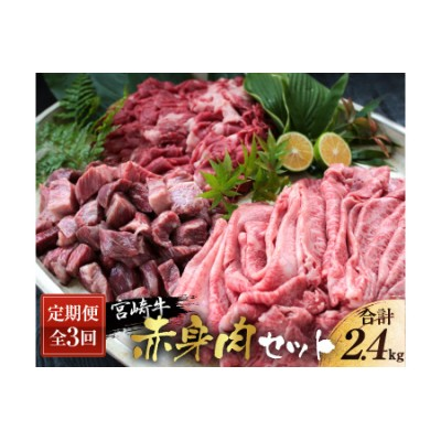 DA16 《3か月定期便》宮崎牛赤身肉セット(合計2.4kg)都農町加工品