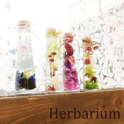 ハーバリウム プリザーブド フラワー 円錐 瓶 植物標本 インテリア ギフト プレゼント 母の日 (お花部-Ohanabu-)