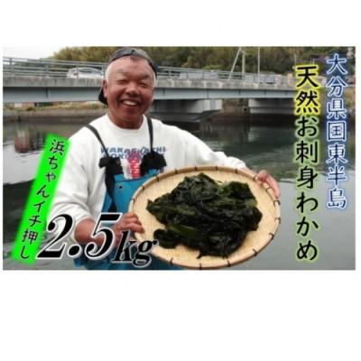 国東半島の天然お刺身わかめ(2.5kg)