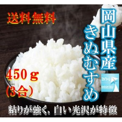 米 ポイント消化 送料無料 食品 米 お試し お米 令和元年産 岡山県産きぬむすめ450g(3合)  1kg以下 メール便 代金引換不可