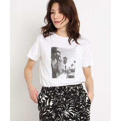 COUP DE CHANCE/クードシャンス 【洗える】リーフエフェクトプリントTシャツ ホワイト(001) 38(M)