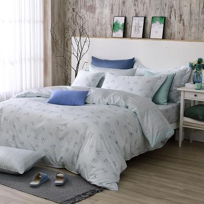 OLIVIA  蘇菲亞 標準雙人床包兩用被套四件組  300織精梳純棉 台灣製