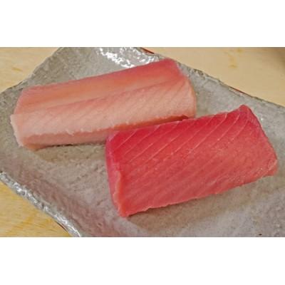 魚二 天然ビンチョウ鮪・目鉢鮪中トロ約1.6kgセット