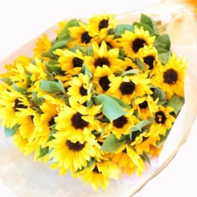 ひまわり ヒマワリ 向日葵 50本 ひまわりの花束 プレゼント ギフト 誕生日 結婚記念日 歓迎 送迎 プロポーズ