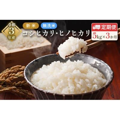 「3ヵ月定期便」令和3年産 新米 無洗米 コシヒカリ・ヒノヒカリ 5kg×3回 合計15kg【C279】